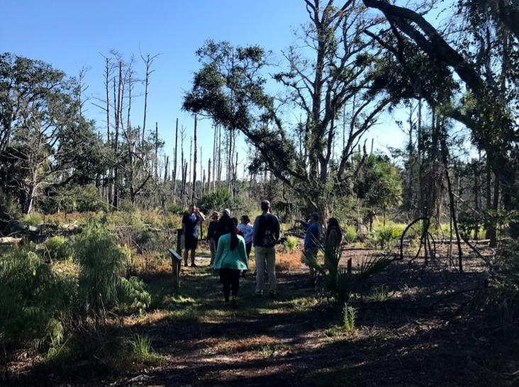 Ecology nature hike at Sapelo led by Dr. Gannon